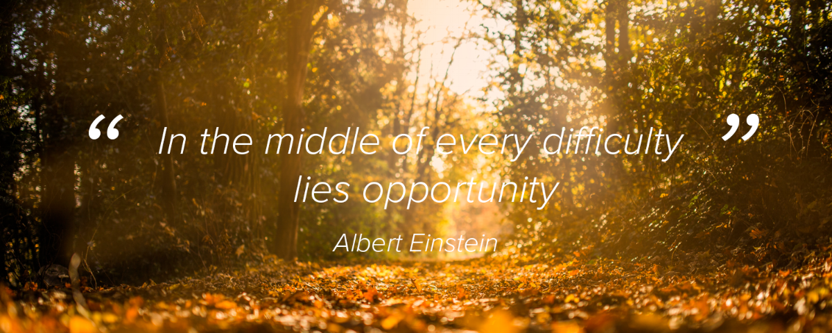 """""""In the middle of every difficulty lies opportunity"""" Albert Einstein"""