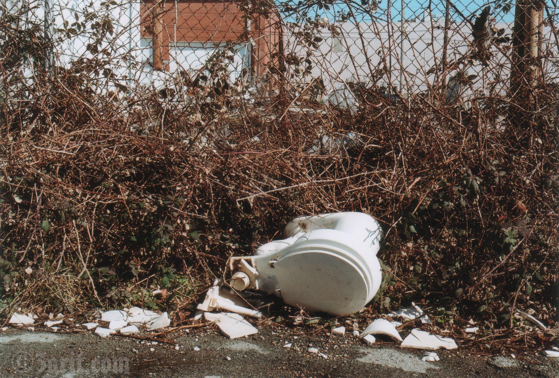 toilet smash film.jpg