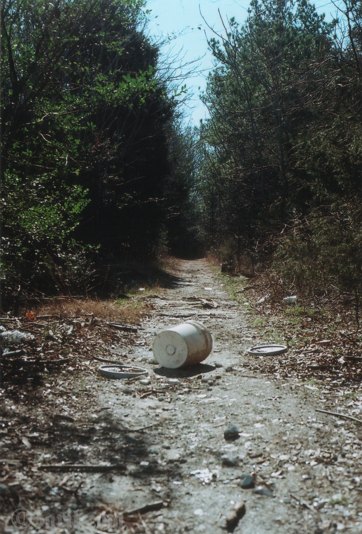 trail barrel film.jpg