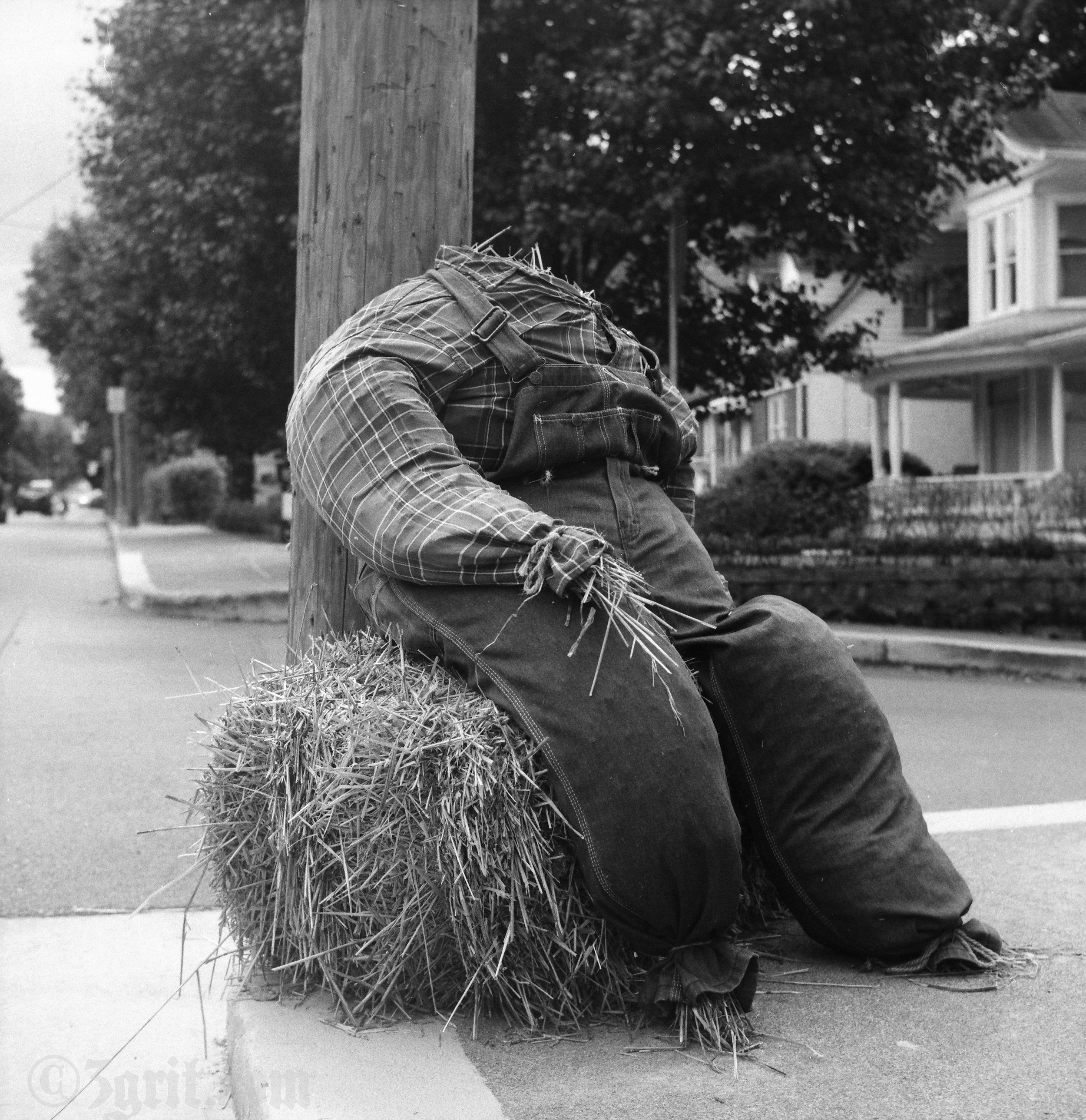 lewisburg scarecrow.jpg