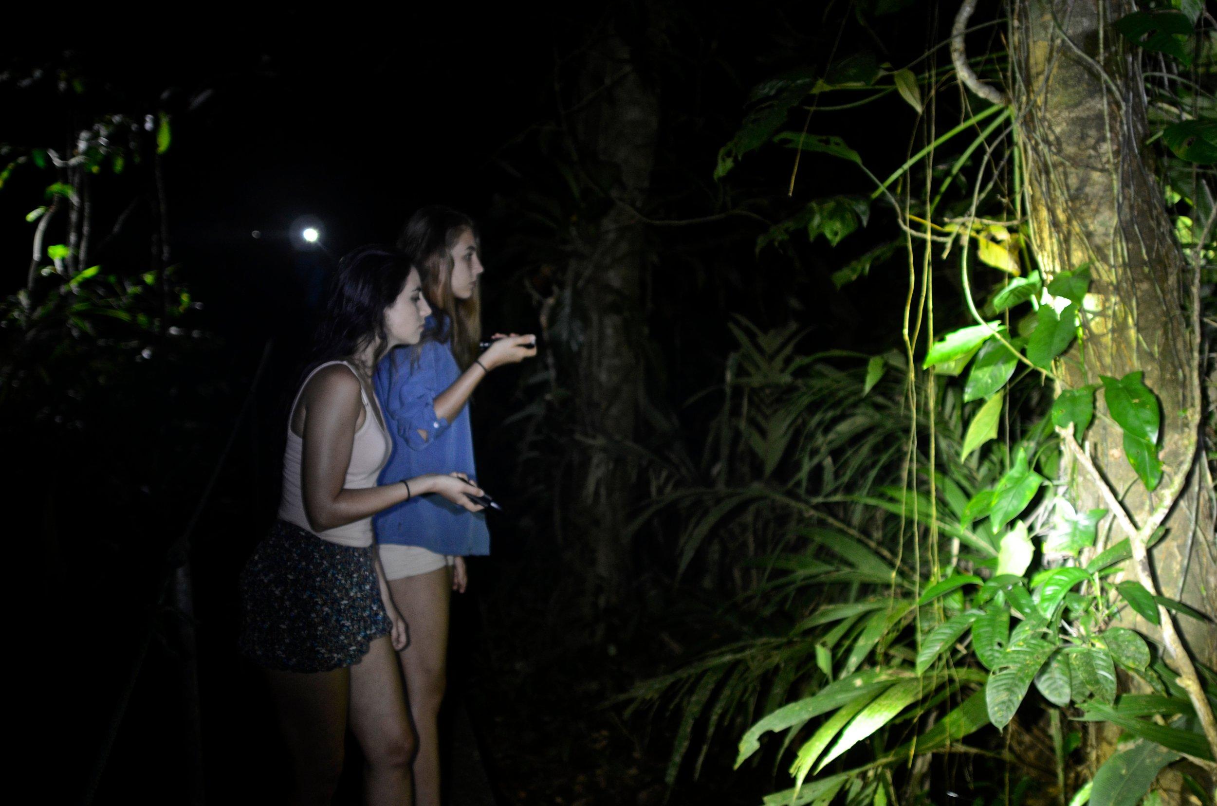 caminata nocturna4.jpg