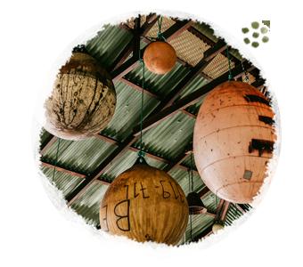 mawamba_lodge-boton_0004_paquetes.png