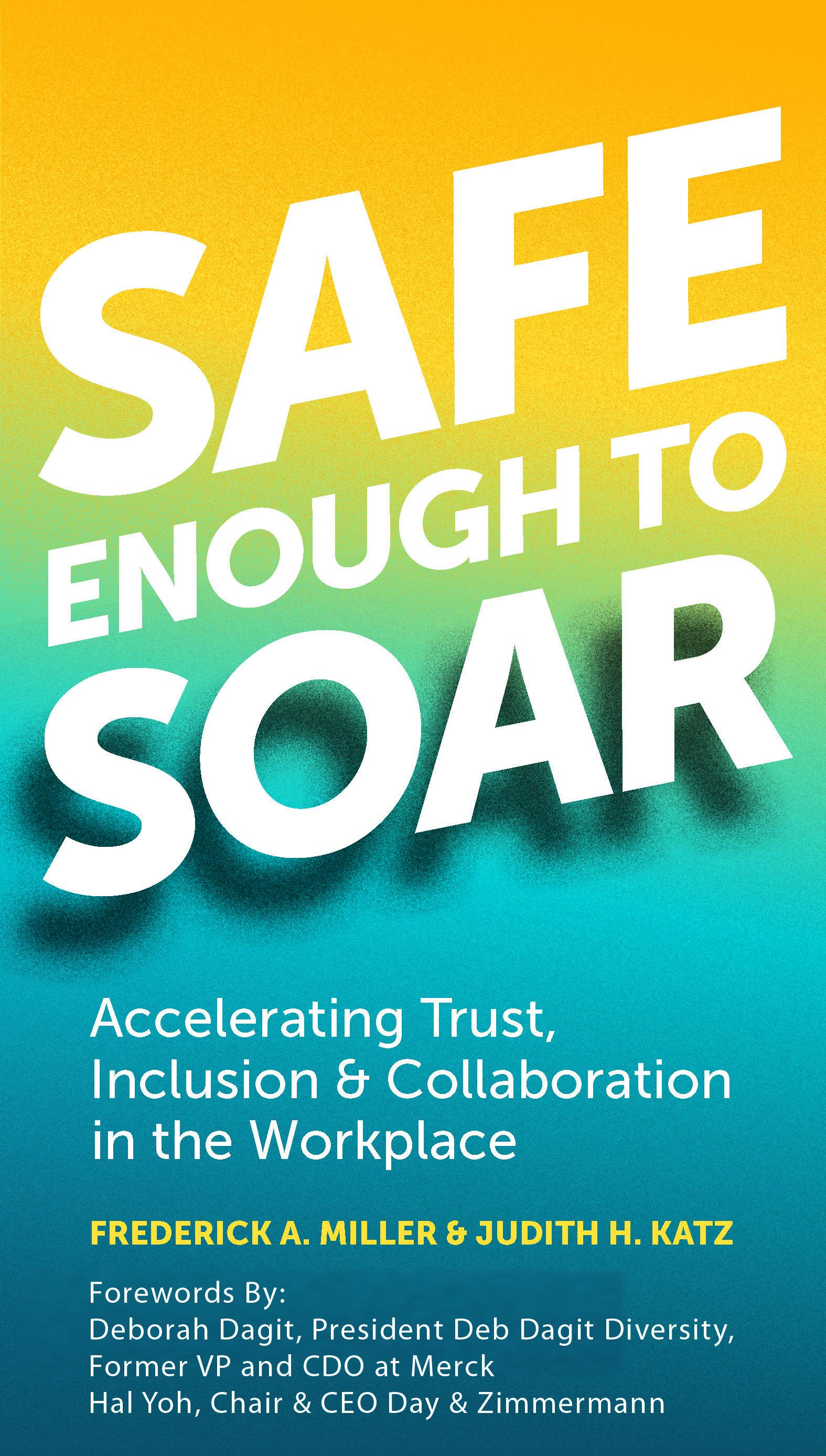 Safe Enough book cover
