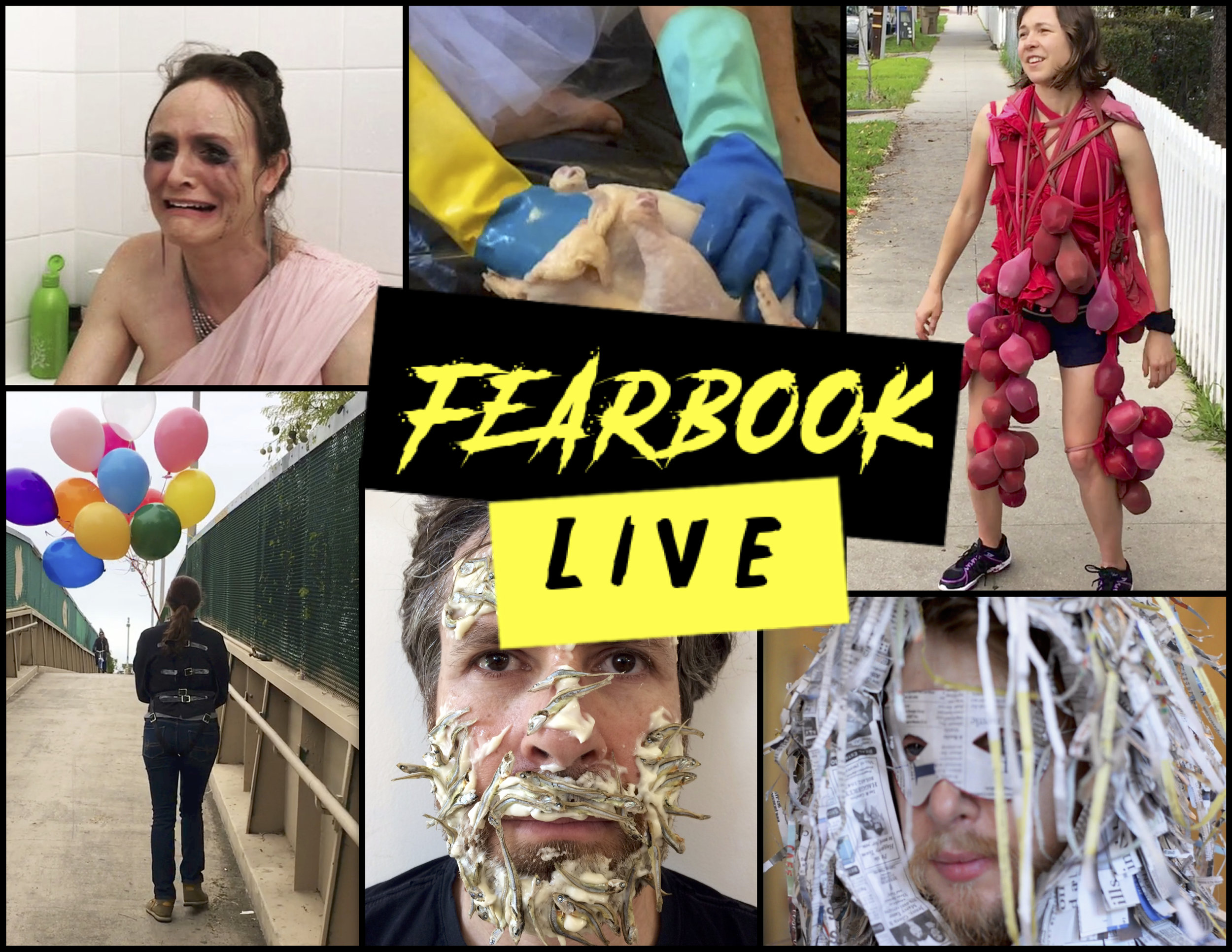Fearbook Live - Fearbook Liveis an internet-based art adventure gameshow created by Ally Bortolazzo and Elizabeth Folk. Variables are chosen by an online audience, contestants have 24 hours to complete a work of art. The ideation process, fabrication, and unveiling of the final piece is live streamed here. View trailer here.