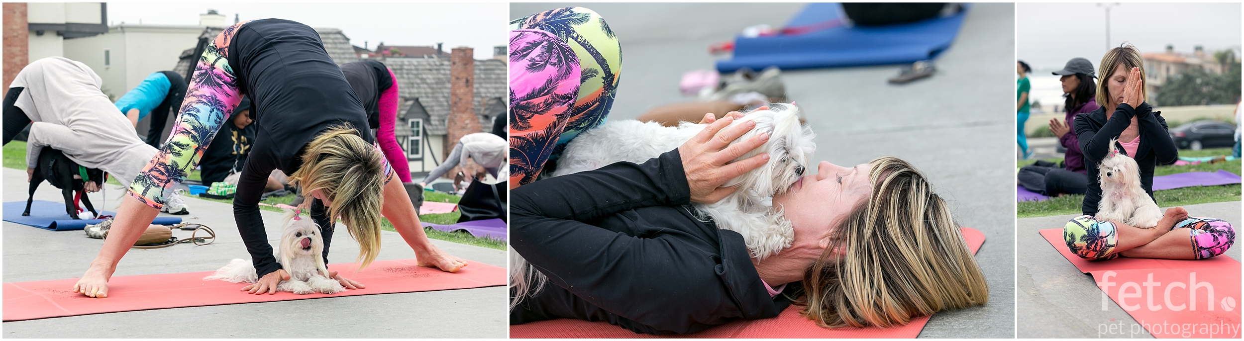 exercise-with-your-dog