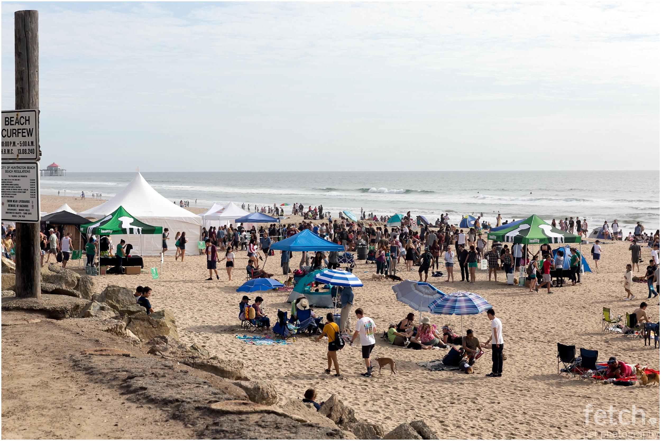 huntington-dog-beach-event