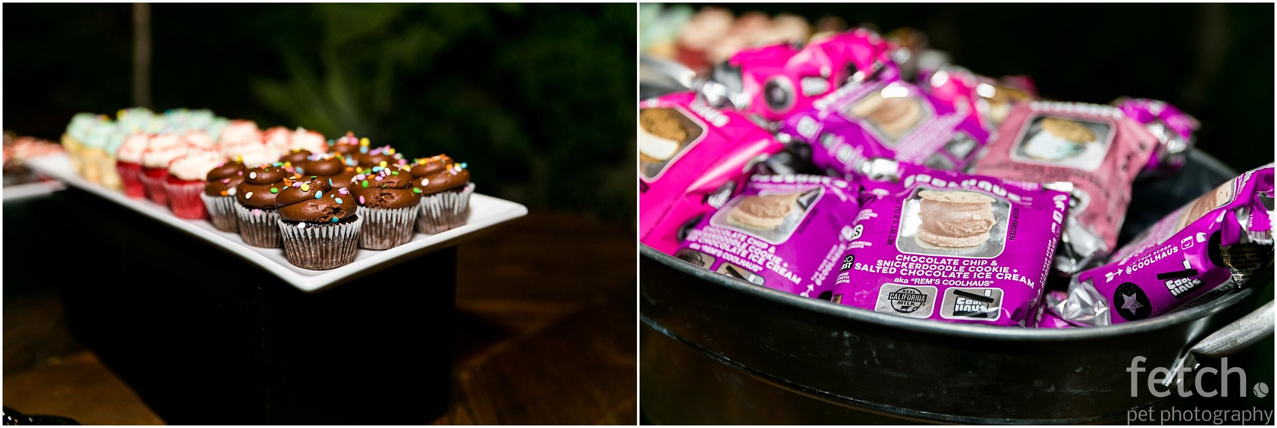 susie-cakes-coolhaus