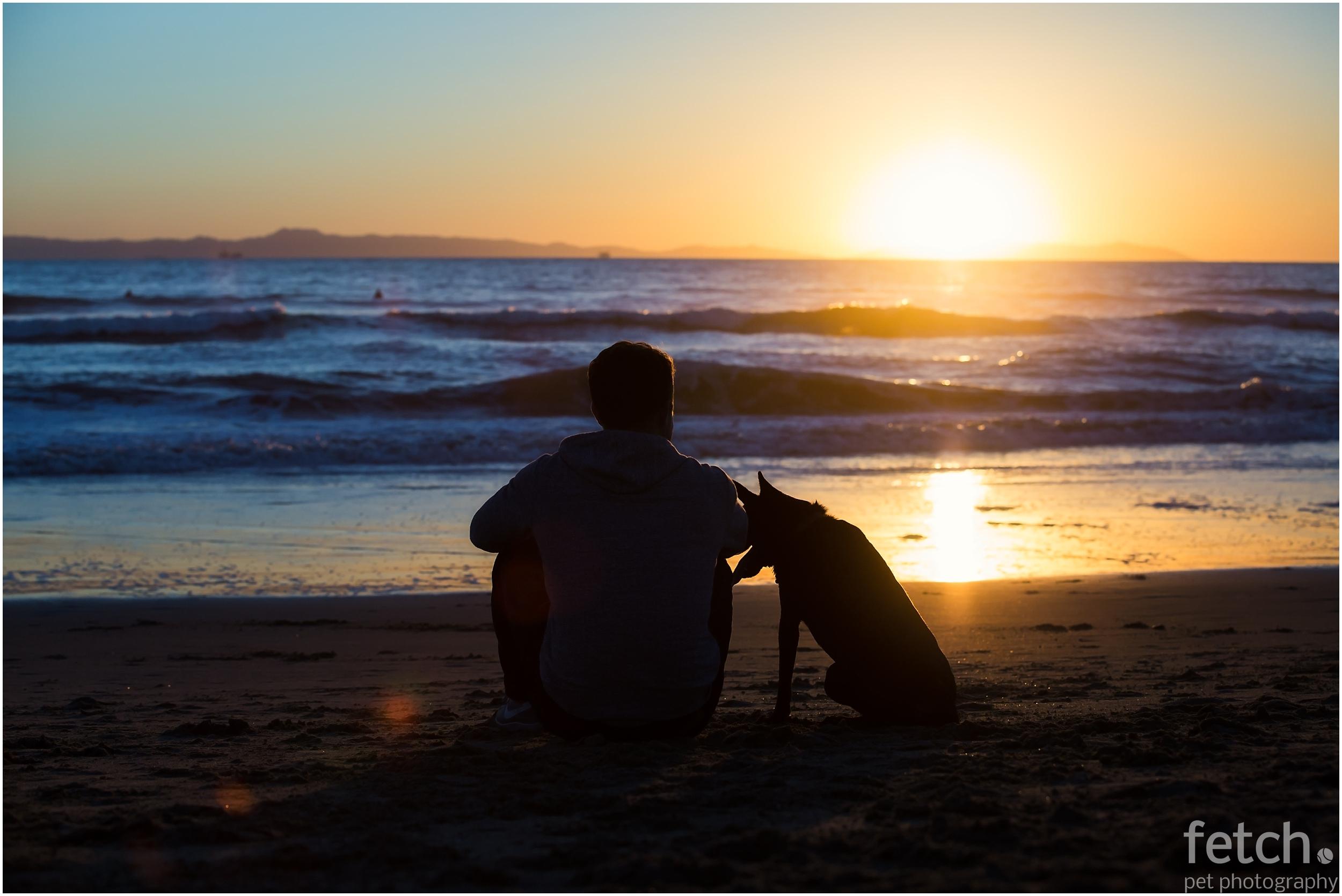 man-and-dog-watch-beach-sunset
