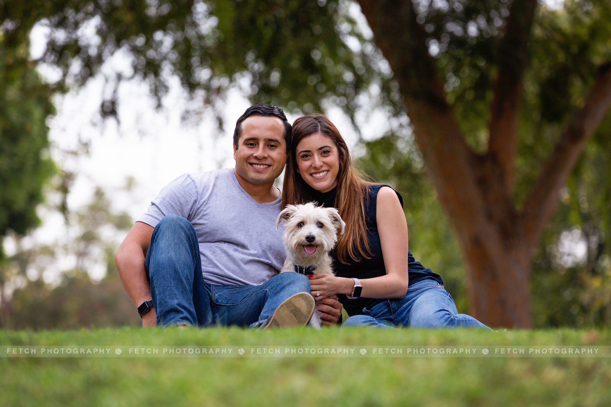 los-angeles-dog-adoption-photography