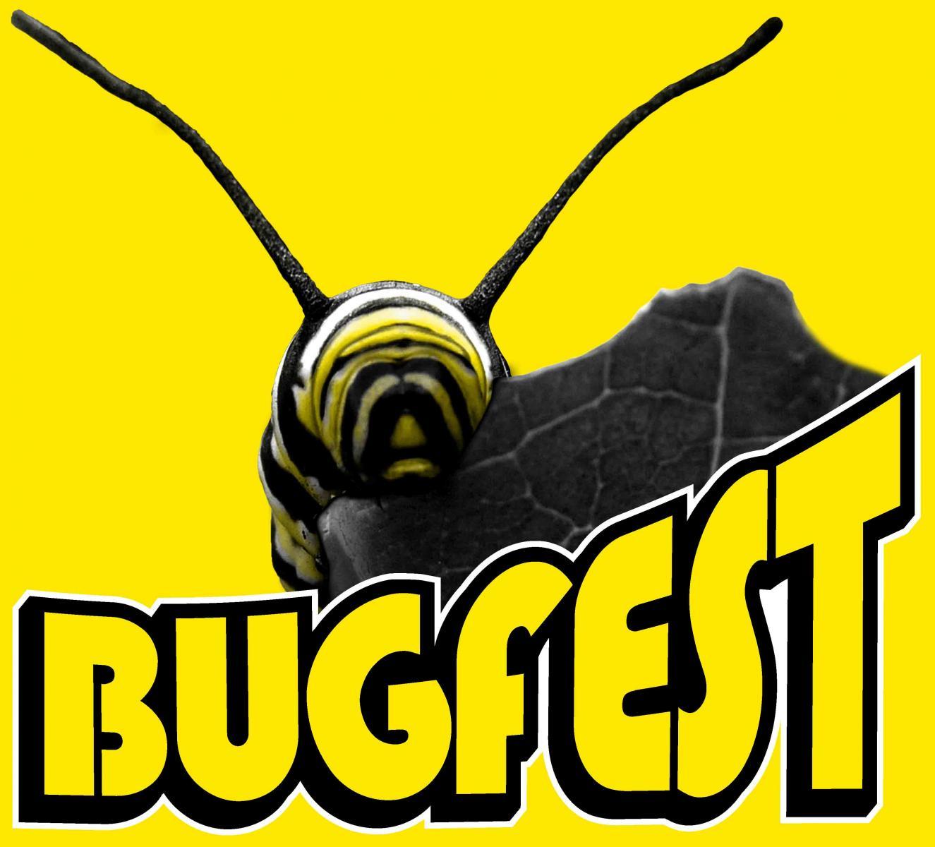 bugfest.jpg