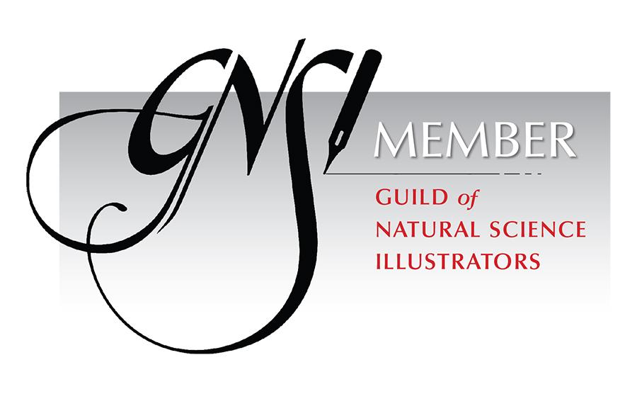 GNSI_Member_Badge_Black.jpg