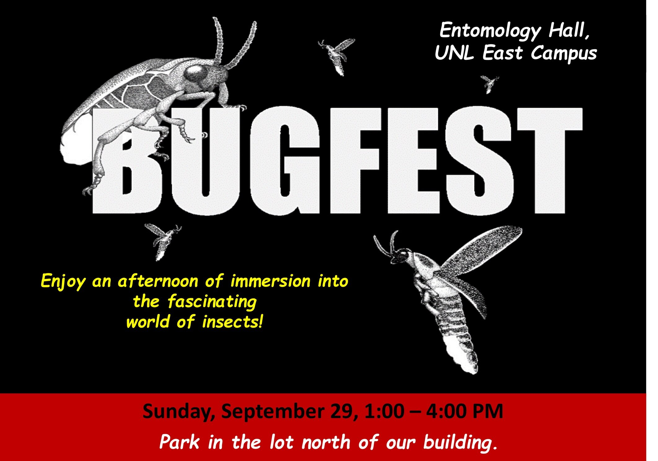Bugfest2019.jpg
