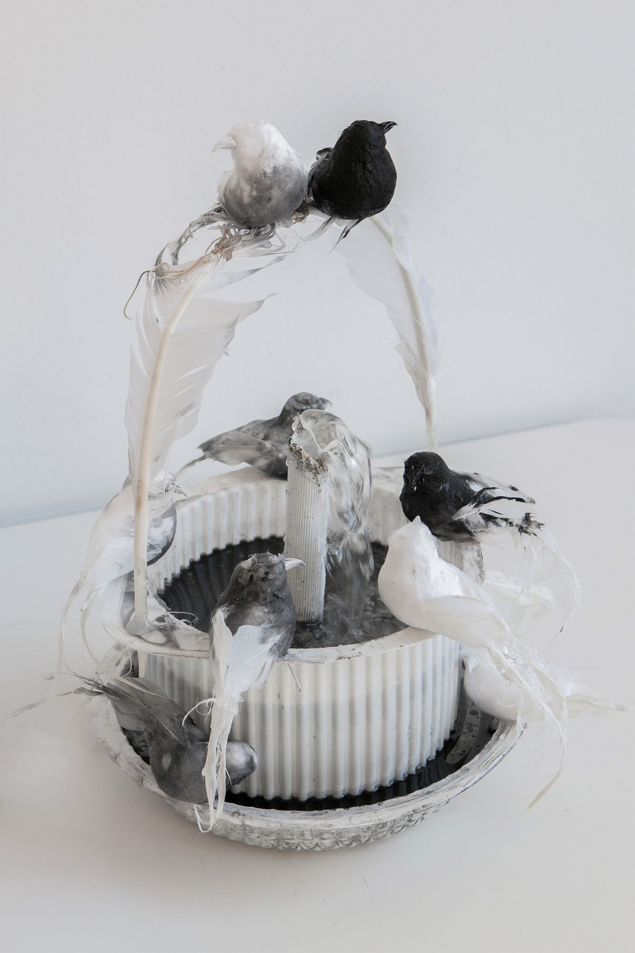 12 - Catástrofe II,29 x 23 x 23 cm plastic, feathers, water, oil, other, 2019.1.jpg