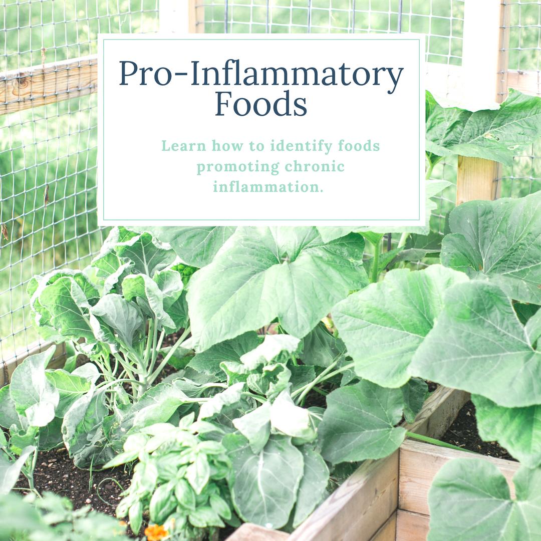 Pro-Inflammatory Foods, Wholesome LLC