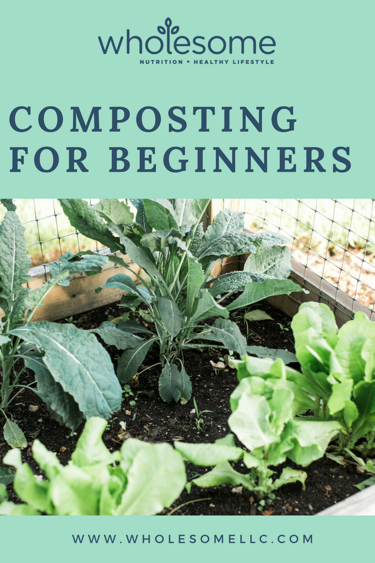 Composting for Beginners - Wholesome LLC