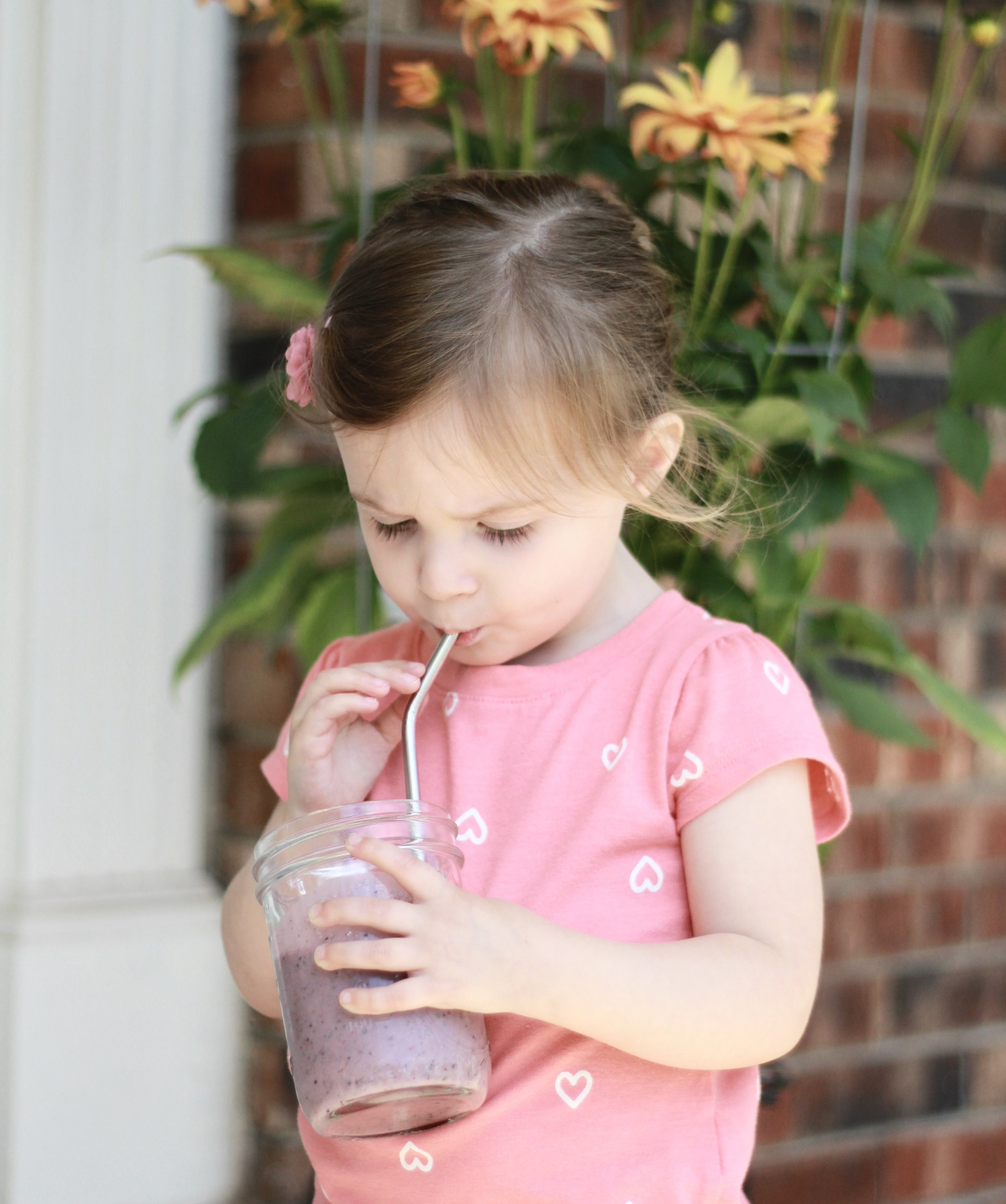 Smoothies vs. Juicing | Wholesome LLC