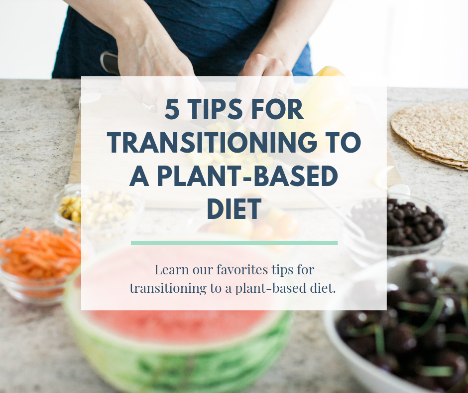 Transition to a Plant-Based Diet | Wholesome LLC