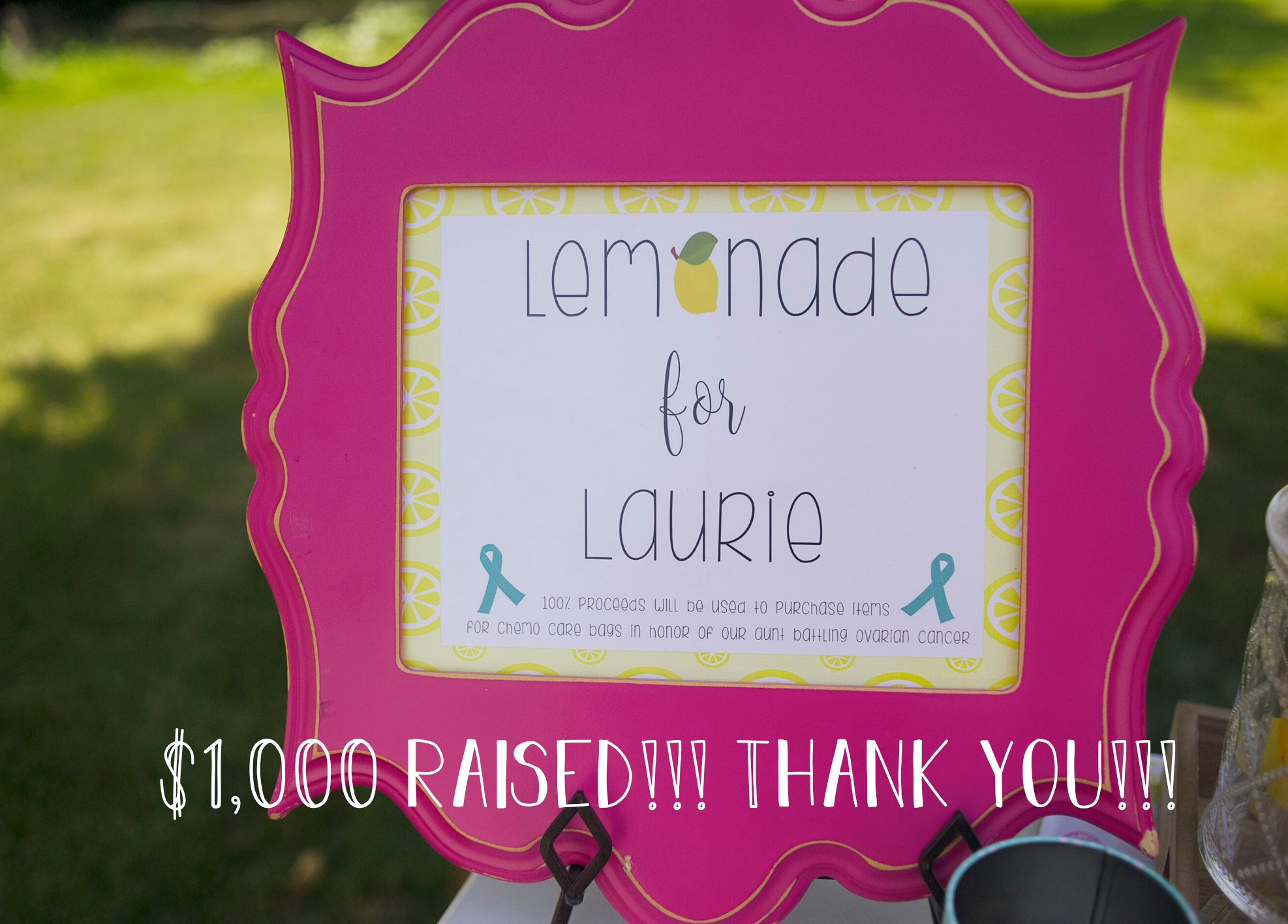 Lemonade for Laurie Fundraiser | Wholesome LLC