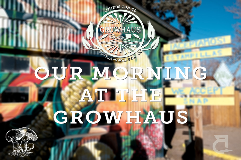 Our team got the amazing opportunity to volunteer with our community partner, The GrowHaus!  Read on to learn about how The GrowHaus is changing their the Elyria-Swansea community for the better!