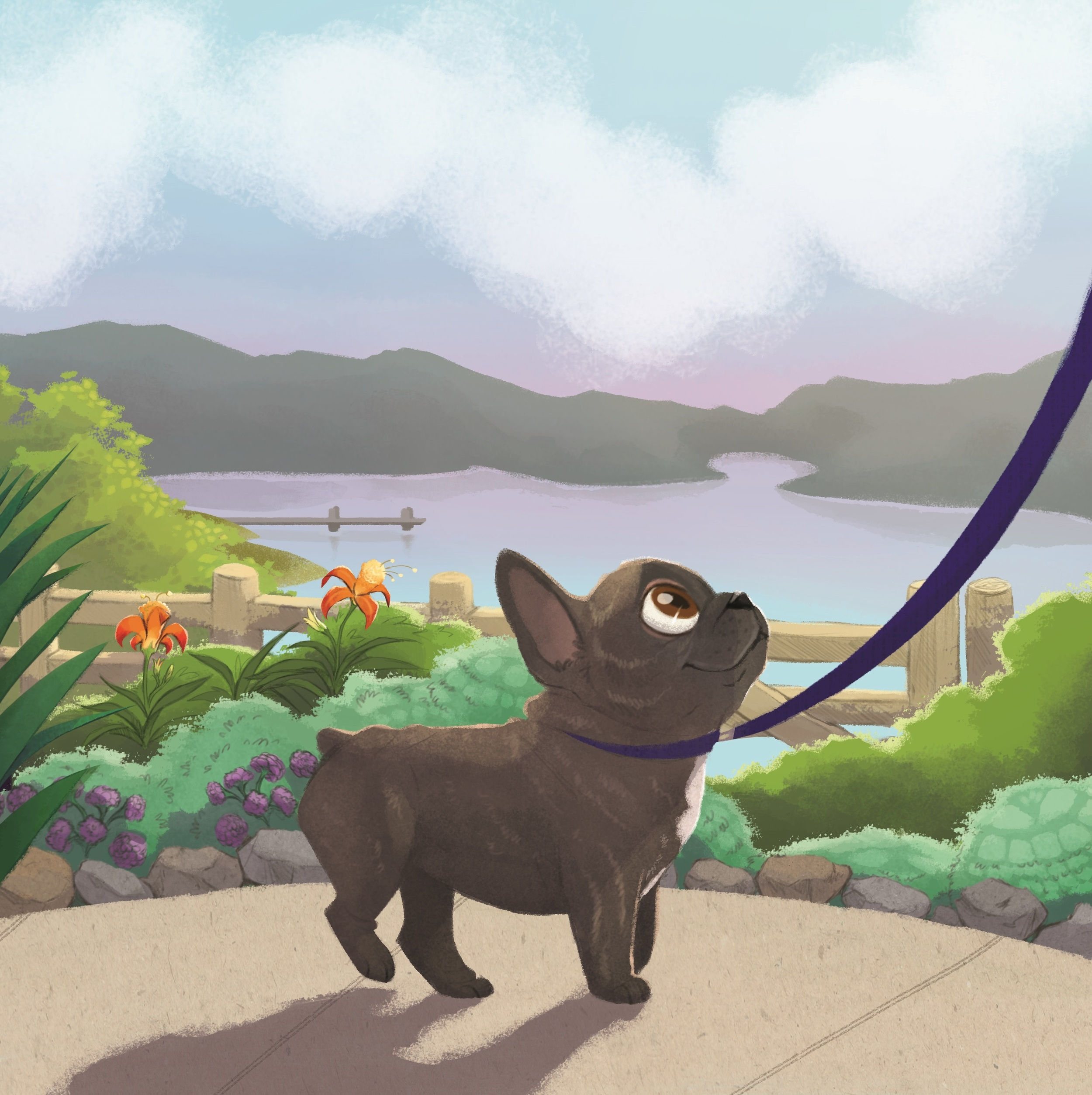Illustration by Morgan Spicer (c) of Soren learning to be a show dog at his home in Maryland