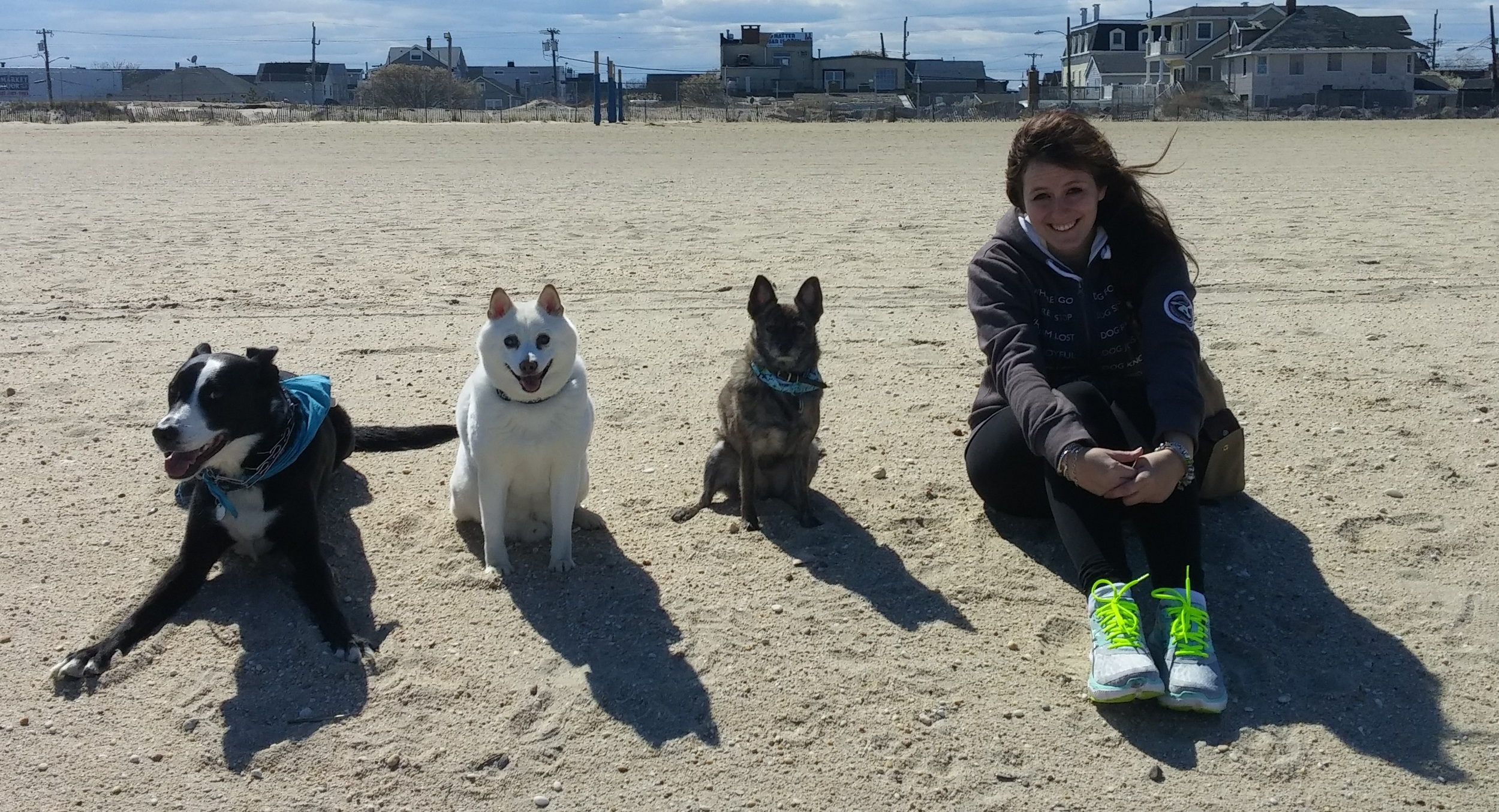 Morgan and her pack at the beach. All three of her canine buddies pictured here (and one new addition)make a guest appearance in various pages in Soaring Soren. See if you can find them!