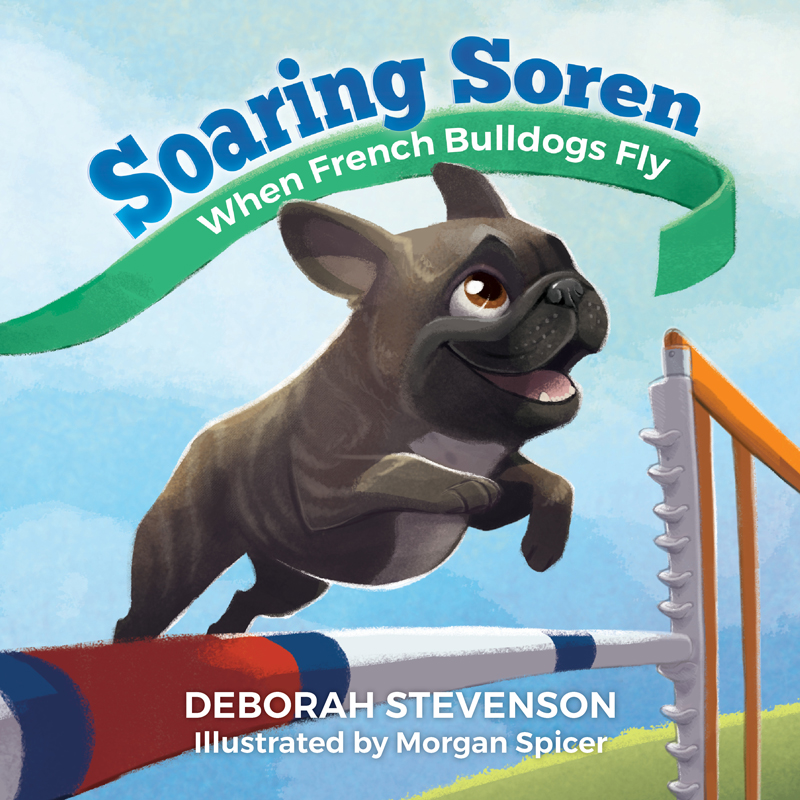 Morgan created the cover art for  Soaring Soren , and the publisher, Aperture Press LLC, added the text later (c) Morgan Spicer