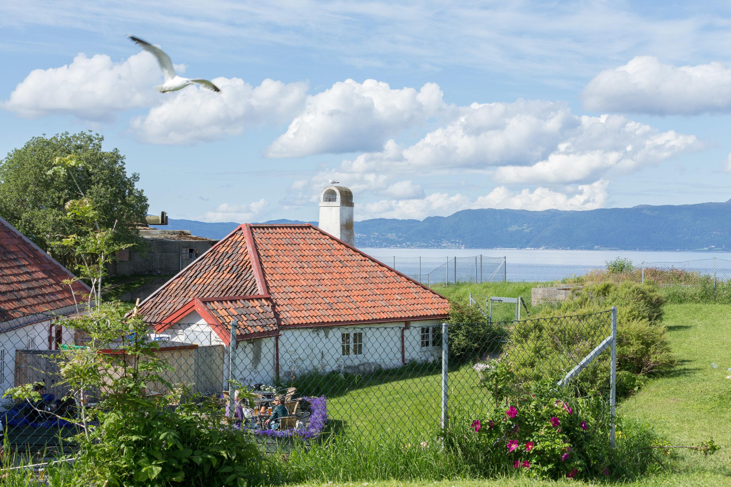 Tripps-båtservice-trondheim-norge-sightseeing-munkholmen-0977.jpg