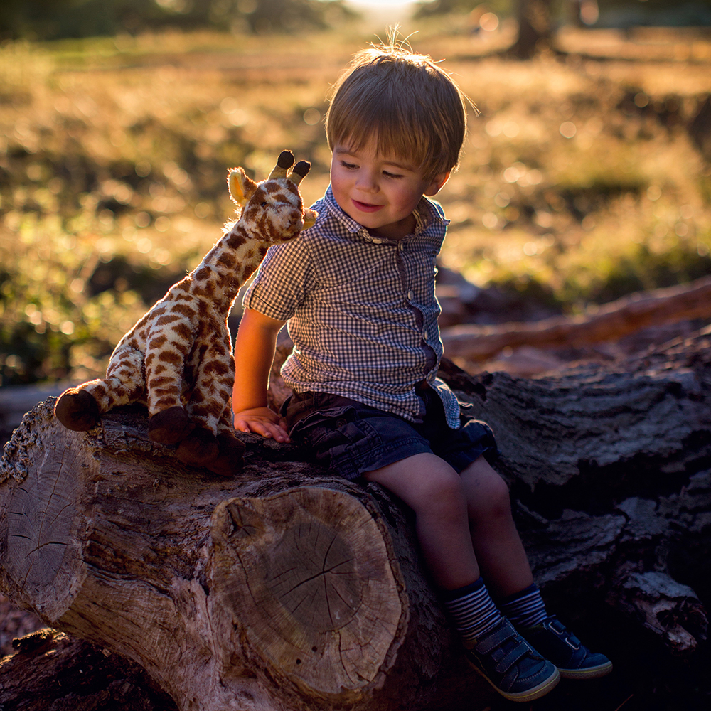 Boy sitting on log with toy giraffe