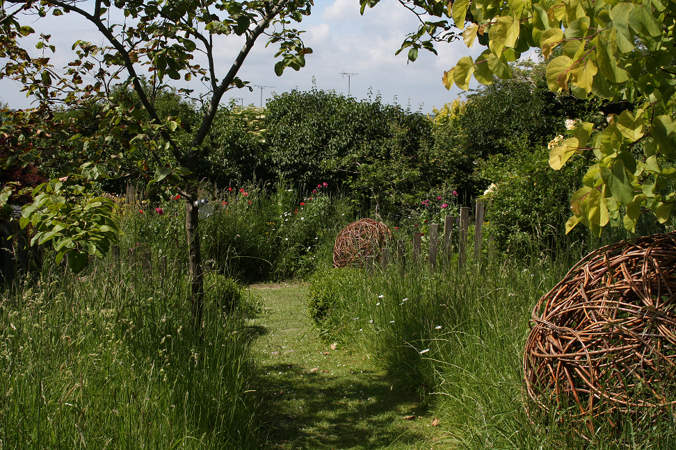 Wildflower Meadow designed by Inviting Spaces