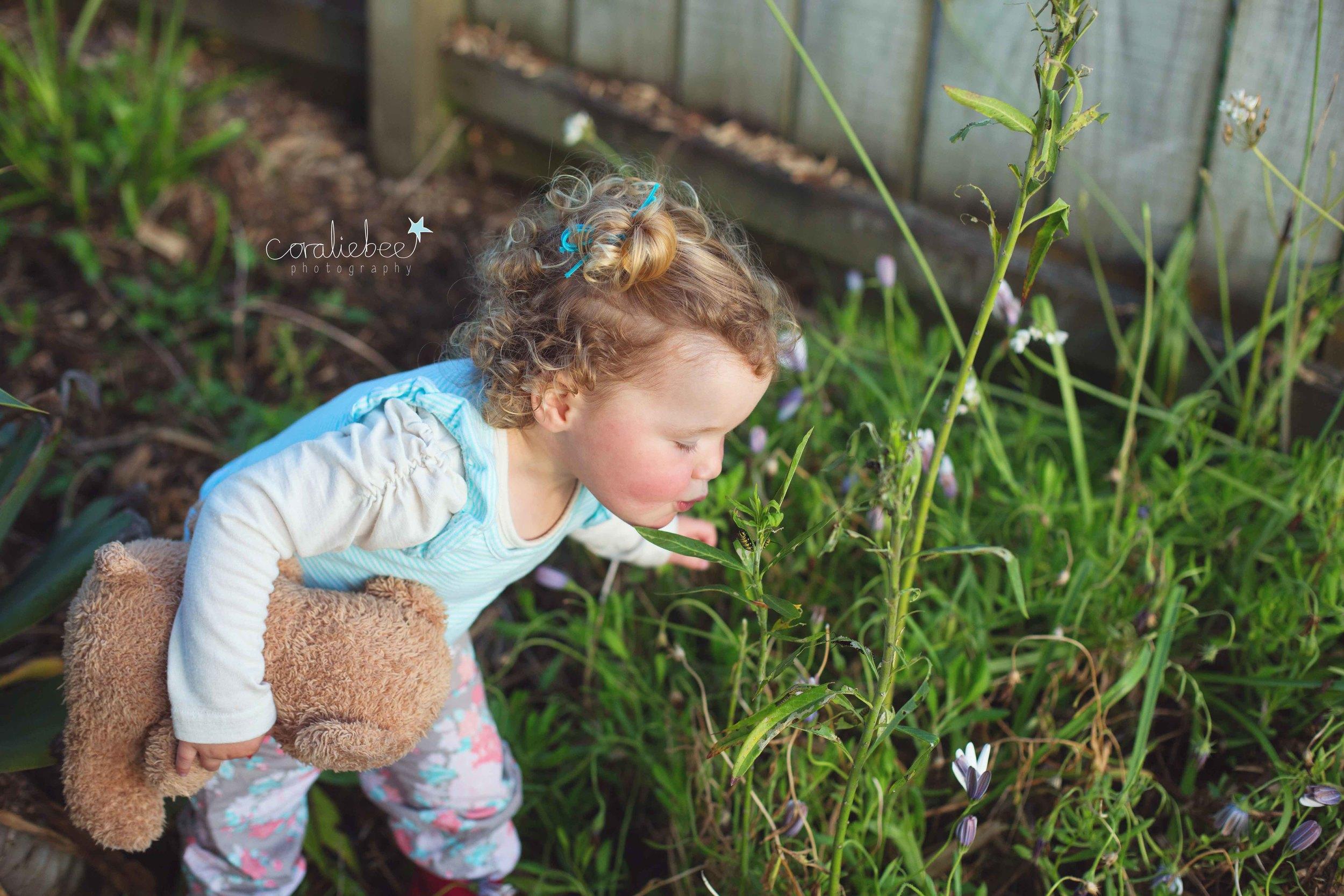 Hazel2_00023.jpg