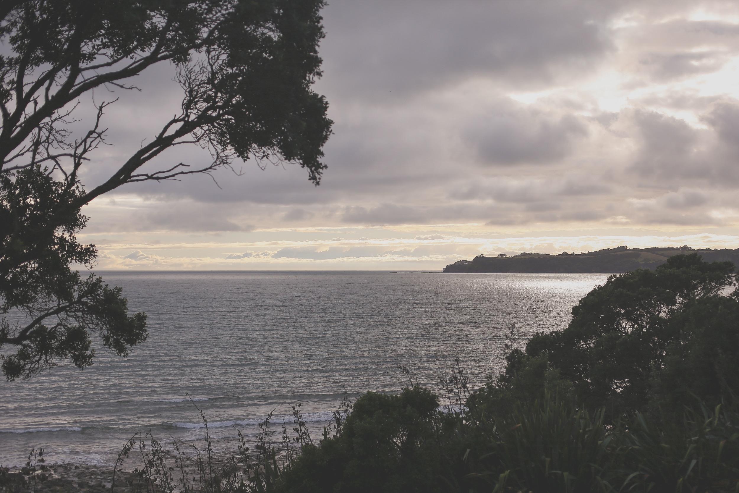 Auckland family photographer_coraliebee photography00009.jpg