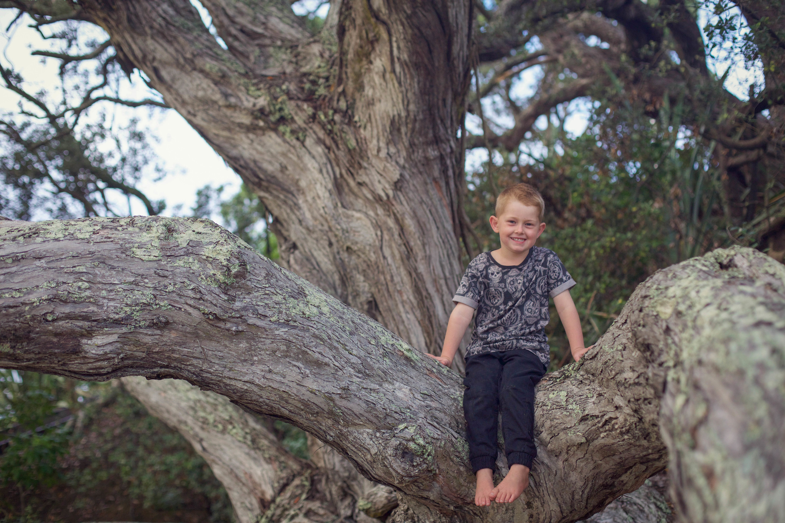 Auckland family photographer_coraliebee photography00019.jpg