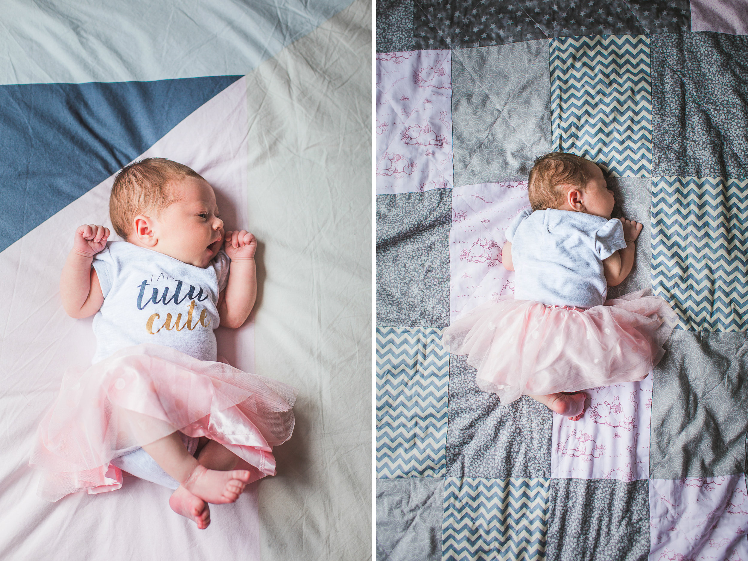 Newborn photographer hibiscus coast 06.jpg