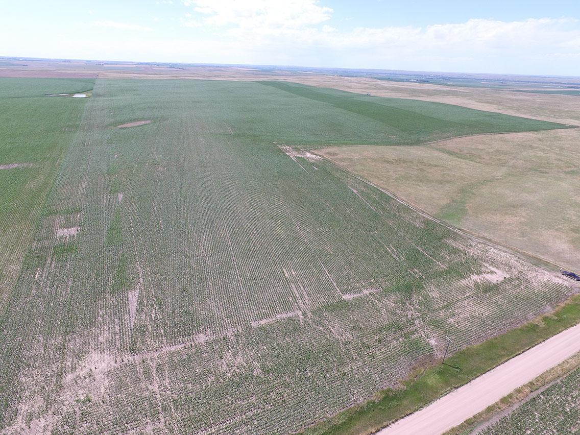 DJI Aerial from southwest corner.jpg