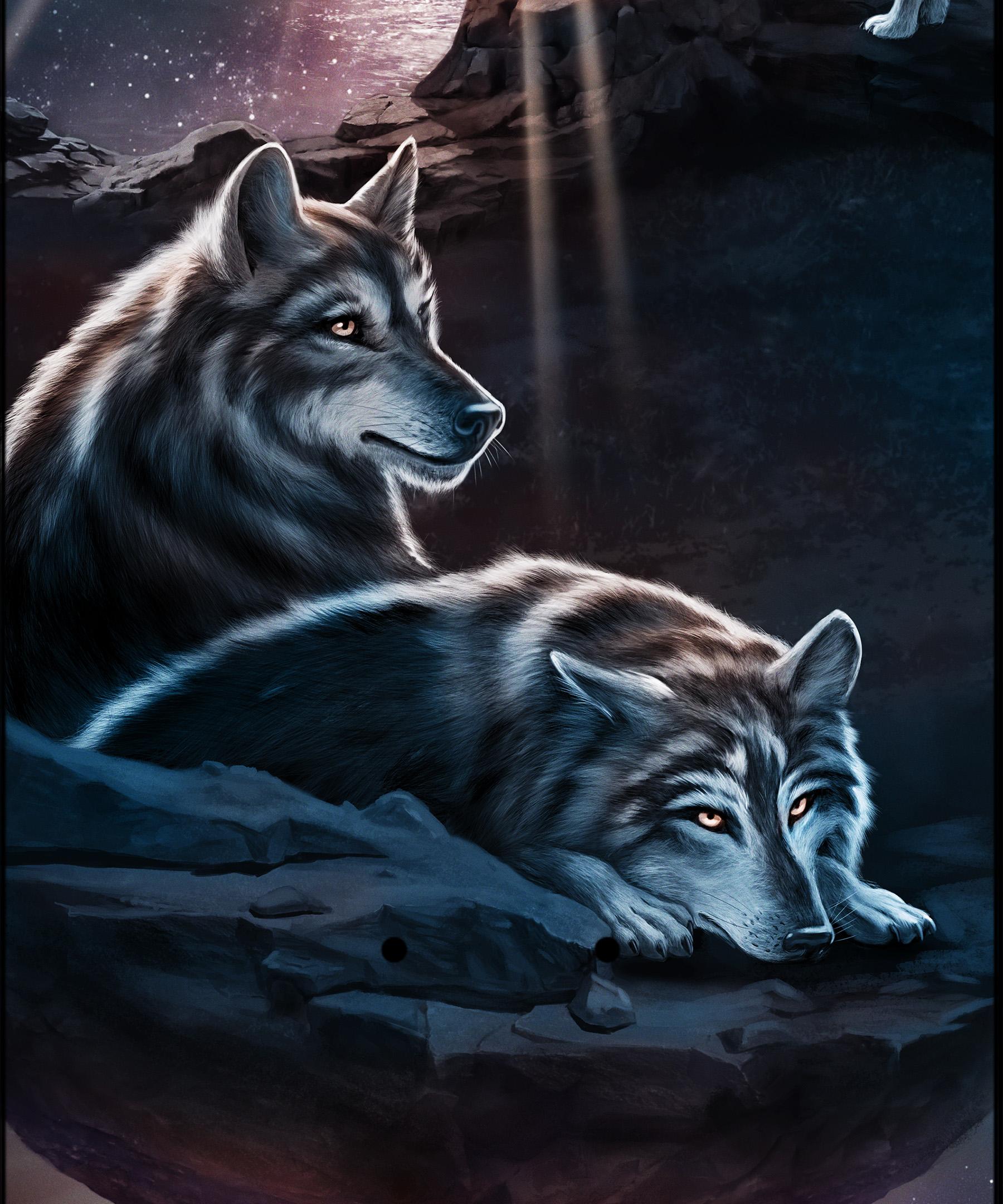 patrickgraf_sevevonow_wolfboard_04.jpg