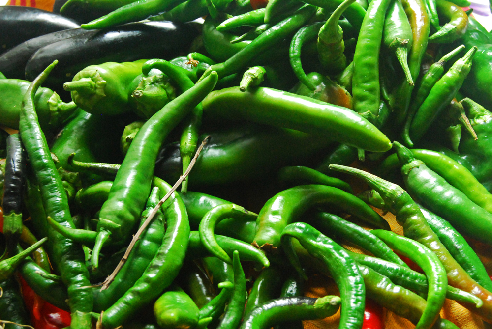 """""""Nature creates the most beautiful things,"""" my mother says. These peppers, again from her vegetable garden, were laid to dry after bringing them home and rinsing them from the dirt. She uses no chemicals whatsoever, only water, sunlight and her hard work."""
