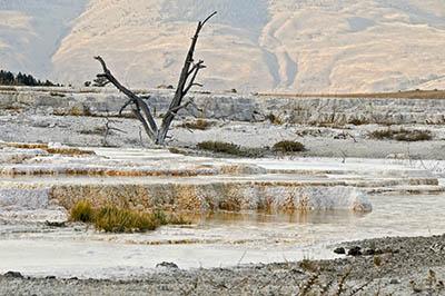 Yellowstone_Park.MW-2.jpg
