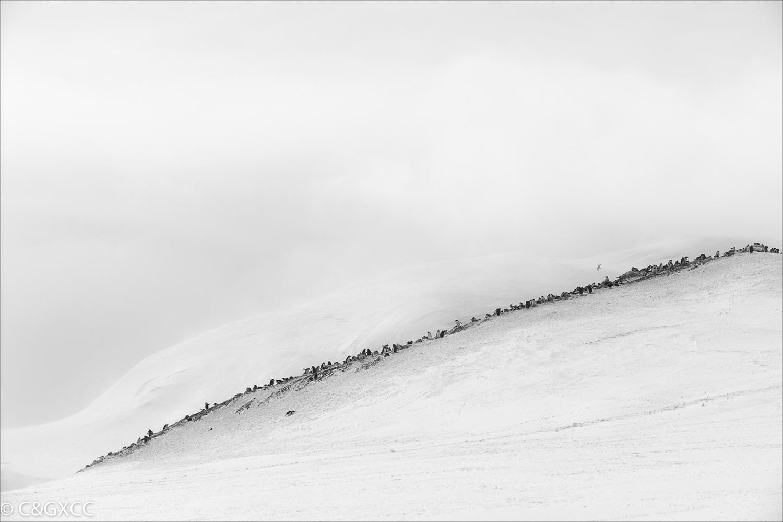 Penguin Ridge Antacrica by John Clark LRPS  Runner Up Mono Prints Set Subject - Minimalism