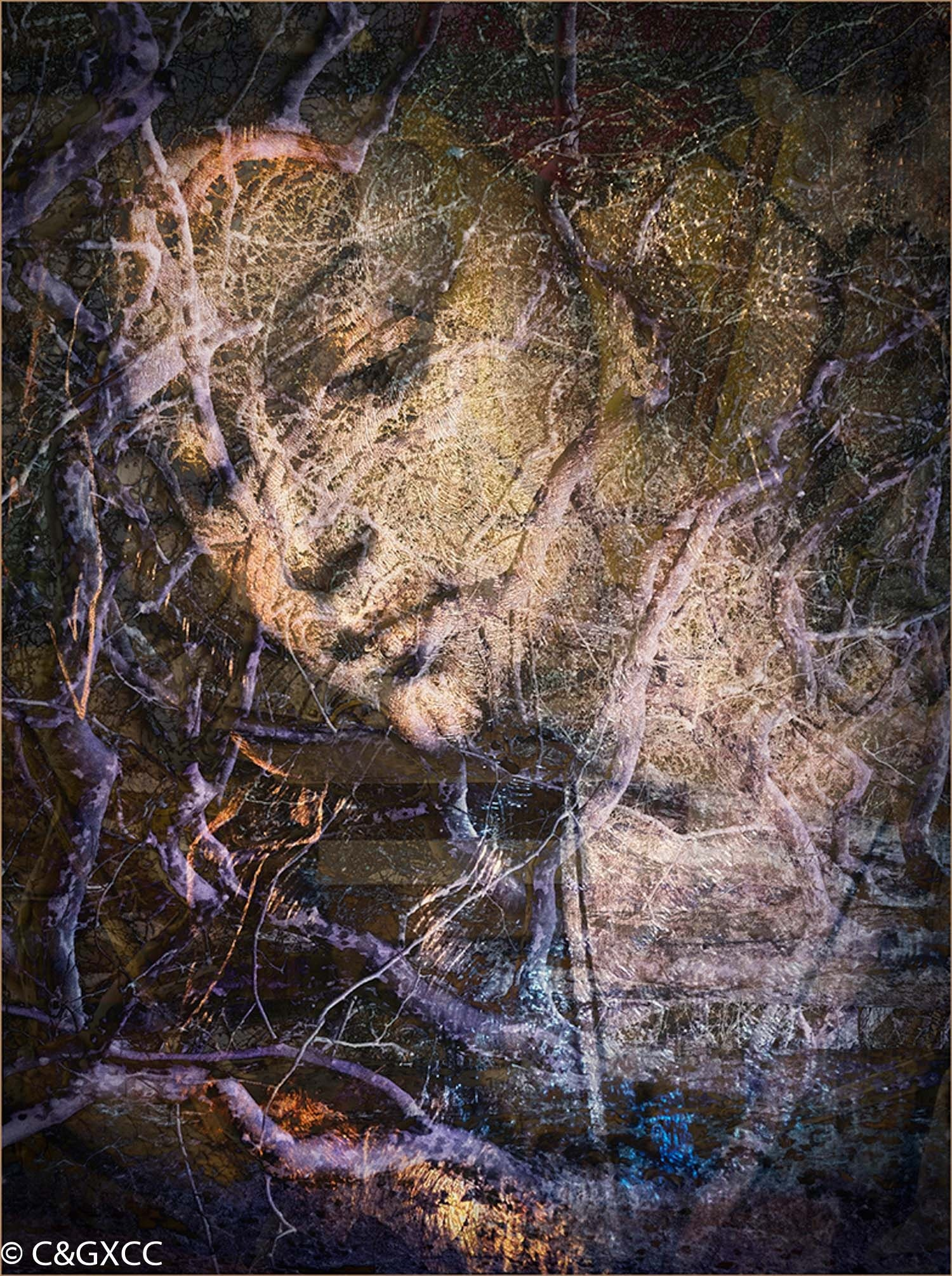 Lady of The Woods by Ray Higginbottom ARPS  Runner Up Colour PDI  Set Subject - Double Exposure