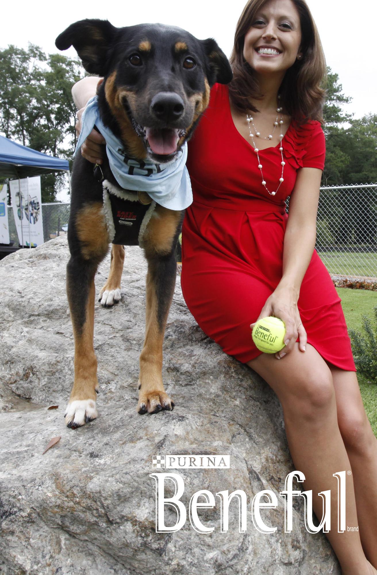 Beneful Dream Dog Park