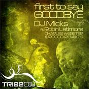First To Say Goodbye  (Incl. Rocco Remixes) Dj Micks Robin Latimore