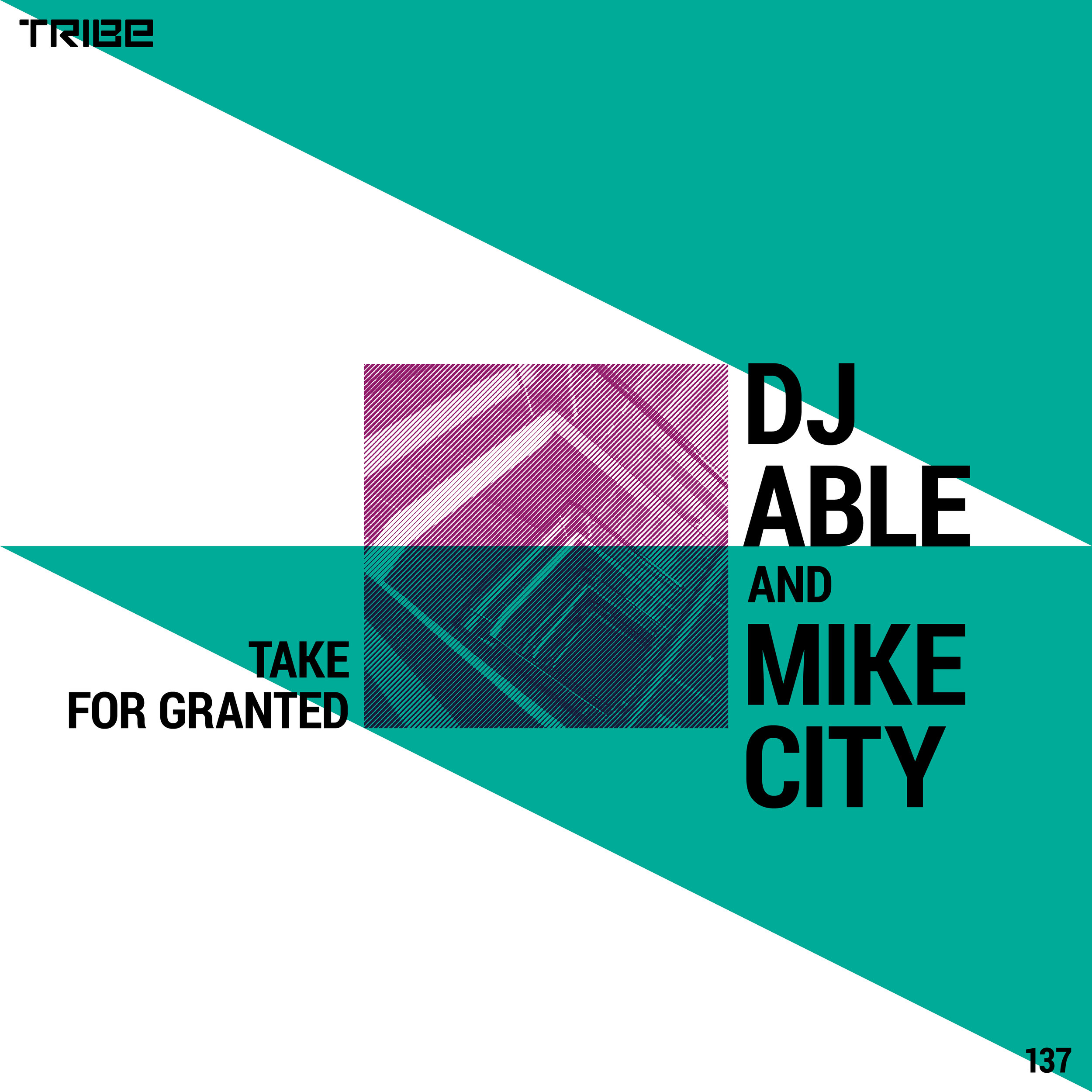 DJ ABLE AND MIKE CITY       TAKE FOR GRANTED