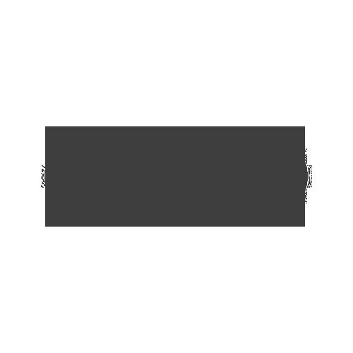 Client_Logo_Audi.png