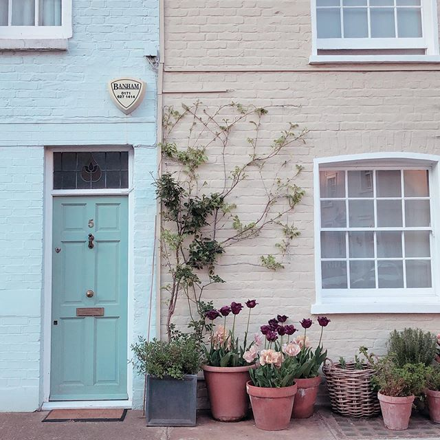 Warm tones and Chelsea homes 🌸 . . . . . . #nowthatsahoneymoon #heyitsthewongs #travelphoto #relationshipgoals #dametraveler #traveltogether #travelmore #visualsoflife #bestvacations #placesaroundearth #forbesttravelguide #travelguide #doyoutravel #travelguide #instatravel #fantastic_earth #travel #couplestravel #wanderlust #travelgoals #coupleswhotravel #chelsea #spring #summer #london #holiday #london #bankholiday #weekend