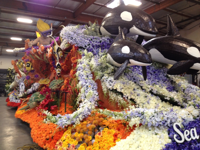 Front of float; side angle.