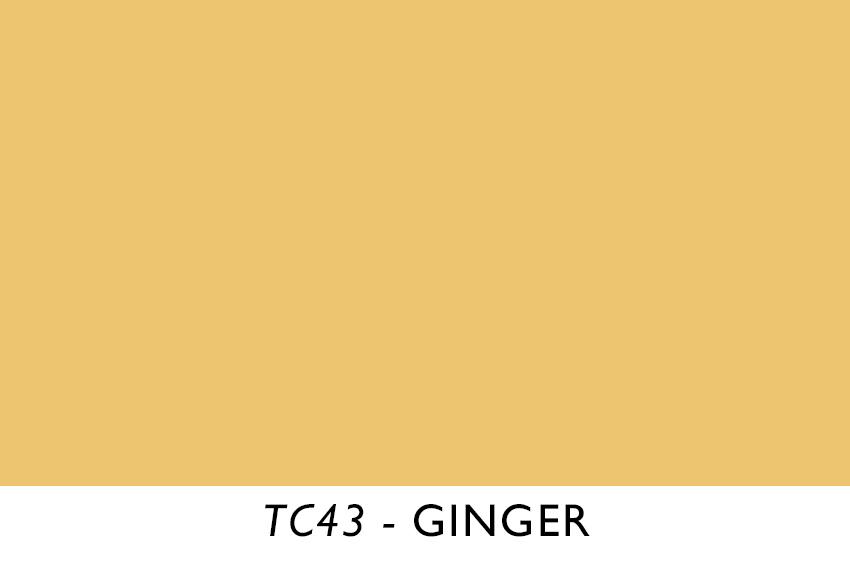TC43.jpg