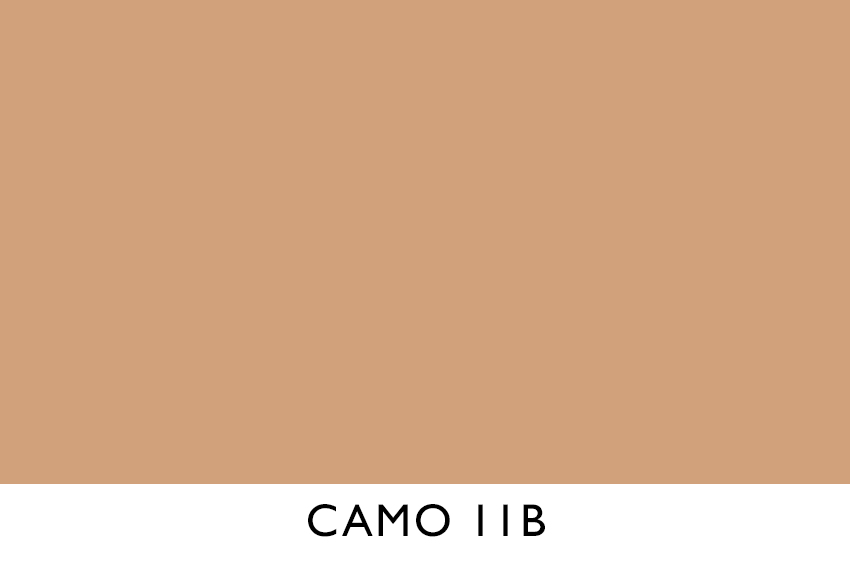 CAMO 11B.jpg