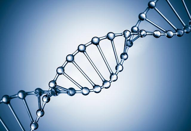 DNA_000046710792_640.jpg