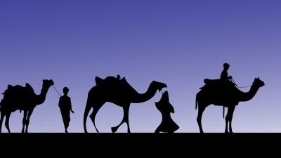 camel-316894_960_720-400x400.jpg