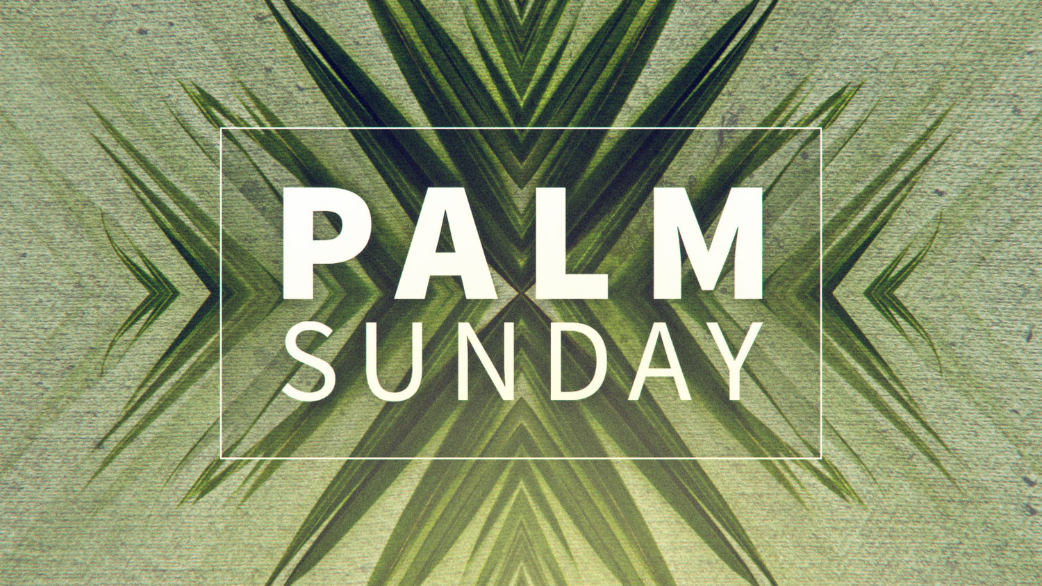 palm_sunday_hd.jpg